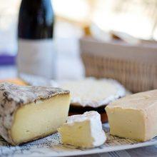 Nuevas explicaciones de la paradoja francesa: la metabolómica del queso