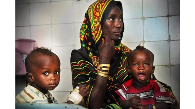 Seguridad alimentaria, sostenibilidad, cooperación y ayuda al desarrollo