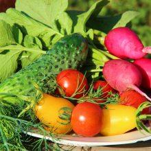 ¿Puede la dieta ser proinflamatoria? ¿Y tener efectos antiinflamatorios?