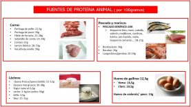 Proteína animal